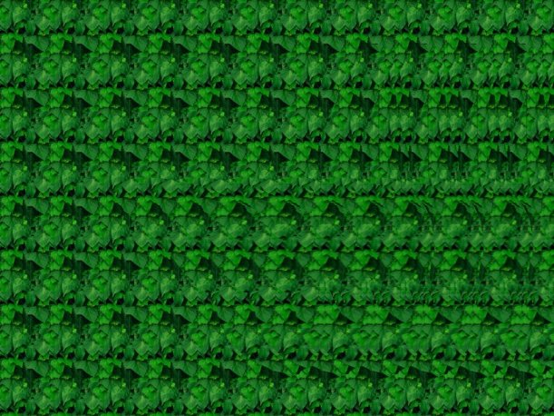 gimp_stereogram_by_fence_post
