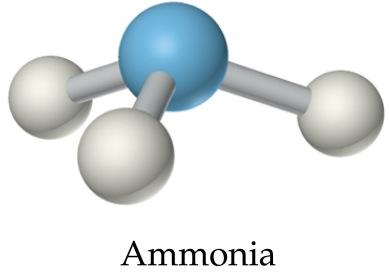 https://thiscondensedlife.files.wordpress.com/2016/05/ammonia.jpg?w=389&h=272